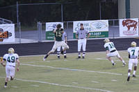 Green and Gold Game 2012 Web 49